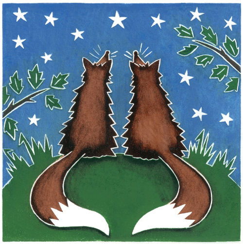 Foxes Star Gazing